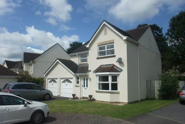 Thumbnail Property to rent in Ffordd Y Briallu, Abergwili, Carmarthenshire