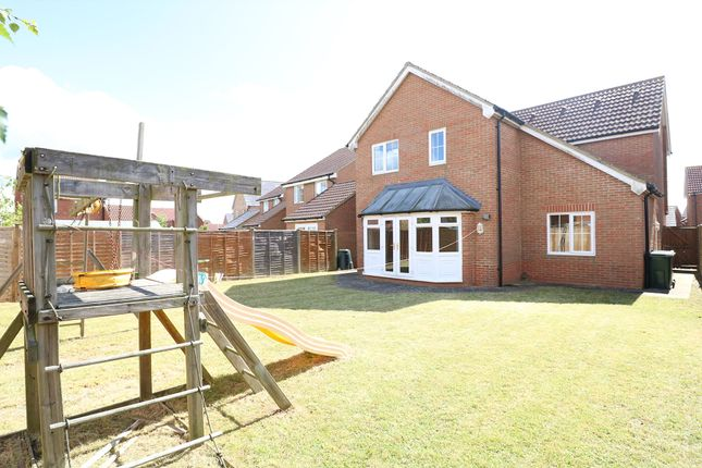 Thumbnail Detached house to rent in Forum Way, Ashford