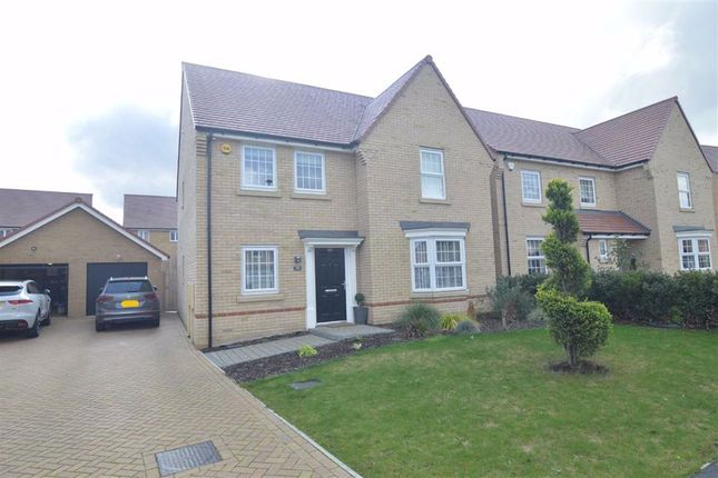 Thumbnail Detached house for sale in St Andrews Way, Stanford-Le-Hope, Essex