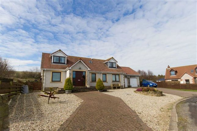 Thumbnail Detached bungalow for sale in Woodbine Grove, Upper Burnmouth, Berwickshire