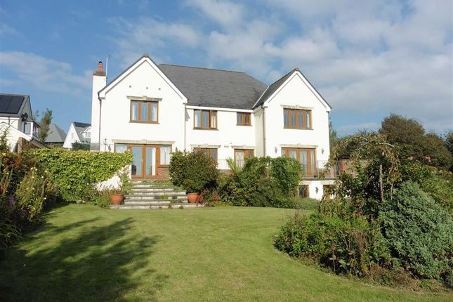 Thumbnail Detached house to rent in Kings Hill Meadow, Bude, Cornwall