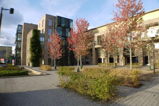Thumbnail Flat to rent in Addenbrookes Road, Cambridge