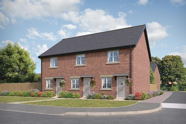 """2 bed semi-detached house for sale in """"Hawthorn"""" at Stoney Lane, Galgate, Lancaster"""
