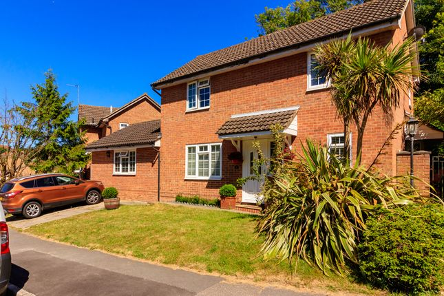 Thumbnail Detached house for sale in Celandine Drive, St. Leonards-On-Sea