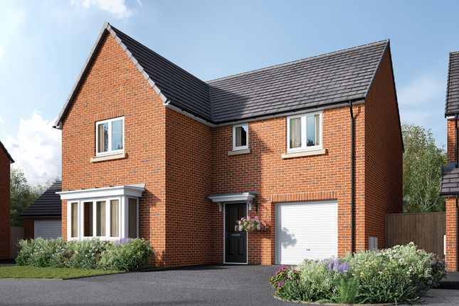 """Thumbnail Detached house for sale in """"The Grainger"""" at Cocked Hat Park, Sowerby, Thirsk"""