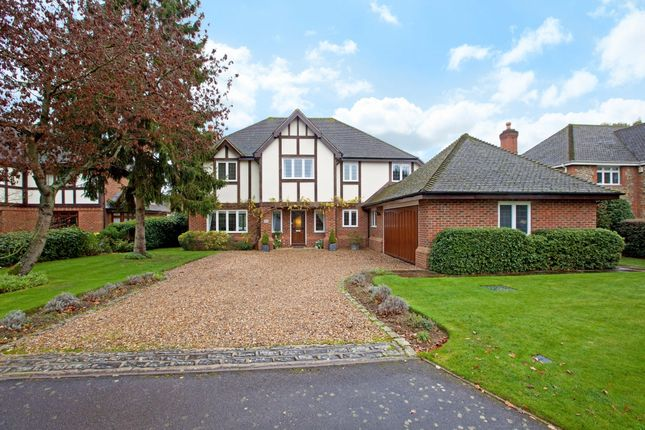 Thumbnail Detached house to rent in Foxborough Court, Maidenhead