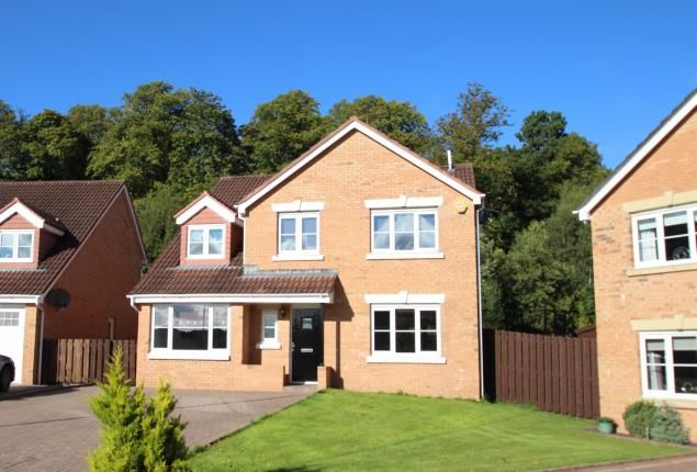 Thumbnail Detached house for sale in John Neilson Avenue, Paisley, Renfrewshire