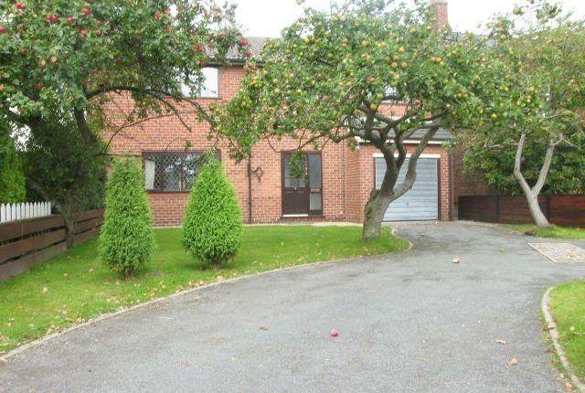Thumbnail Semi-detached house to rent in Mustard Lane, Croft, Warrington, 7Bd