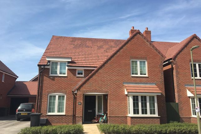 Thumbnail Detached house to rent in Didcot, Oxfordshire