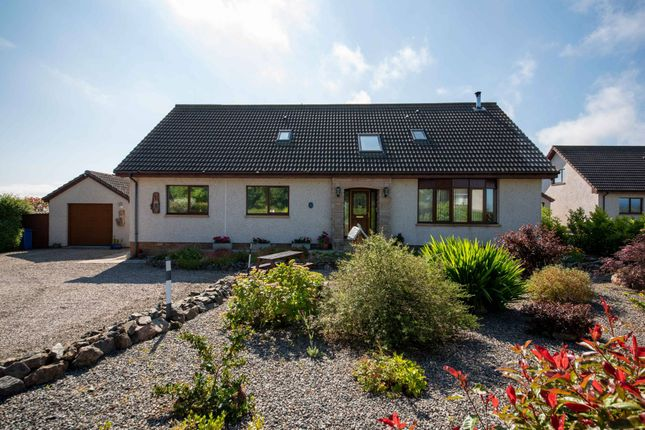 Thumbnail Detached house for sale in Aird Place, Balblair, Dingwall, Highland