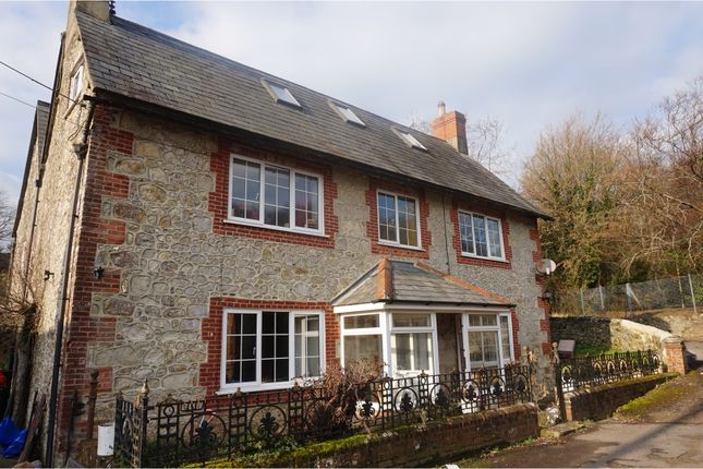 Thumbnail Detached house for sale in Knighton Shute, Sandown