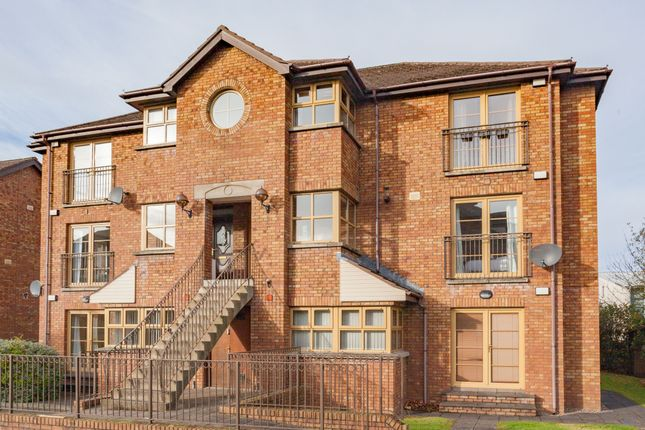 Thumbnail Flat to rent in Forest Grove, Belfast