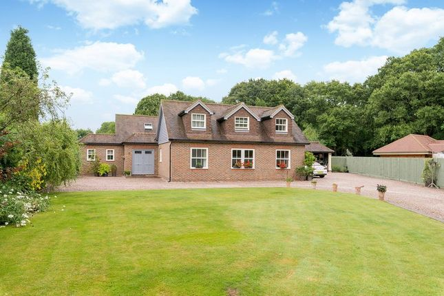 Thumbnail Detached house for sale in Walliswood, Dorking