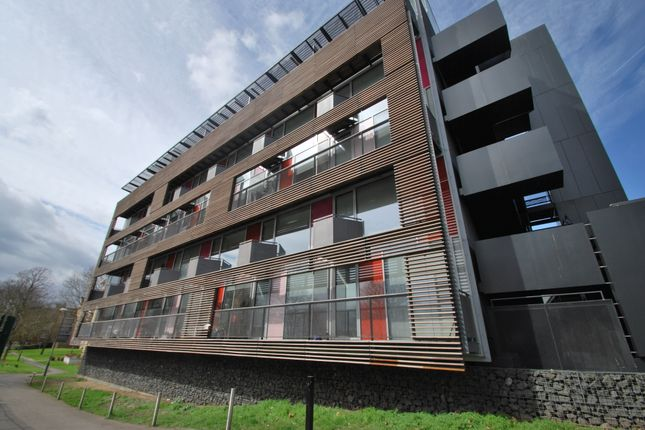 Thumbnail Flat to rent in Dkh, Dog Kennell Hill, London.