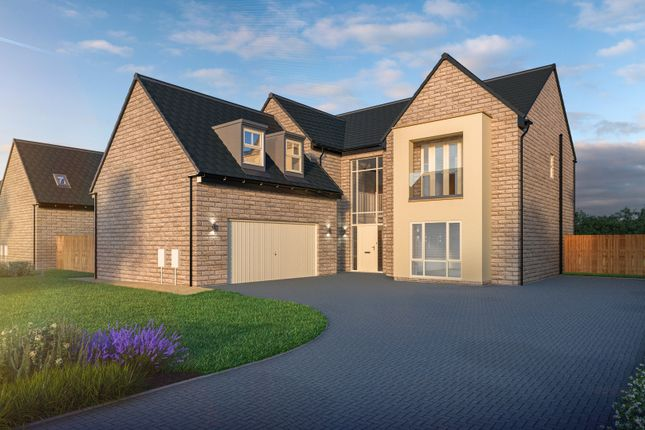 Thumbnail Detached house for sale in New Lane, Dishforth