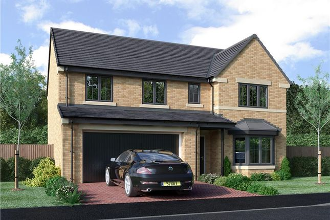 "Thumbnail Detached house for sale in ""The Buttermere"" at Lingdale Avenue, Sunderland"