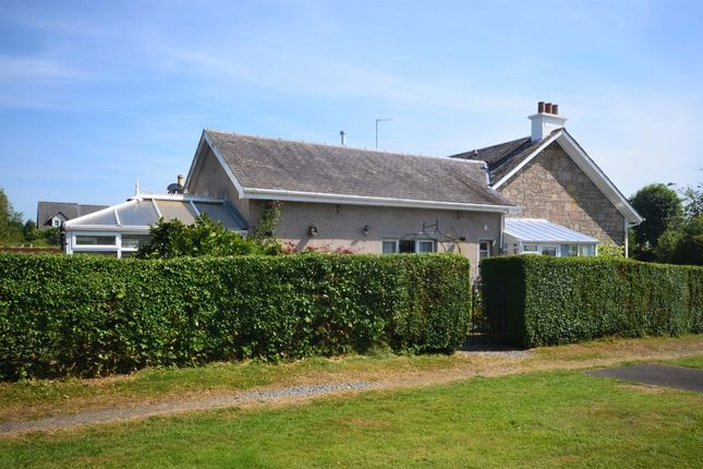 Thumbnail Semi-detached bungalow for sale in Suffolk Street, Helensburgh, Argyll And Bute