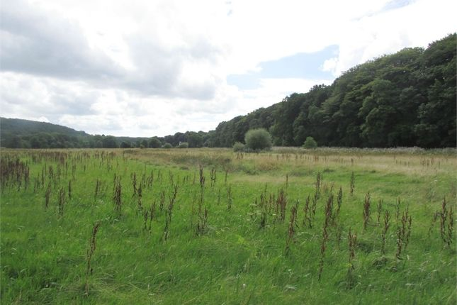 Thumbnail Land for sale in 14.43 Acres Or Thereabouts Of Land, Llawhaden, Narberth, Pembrokeshire