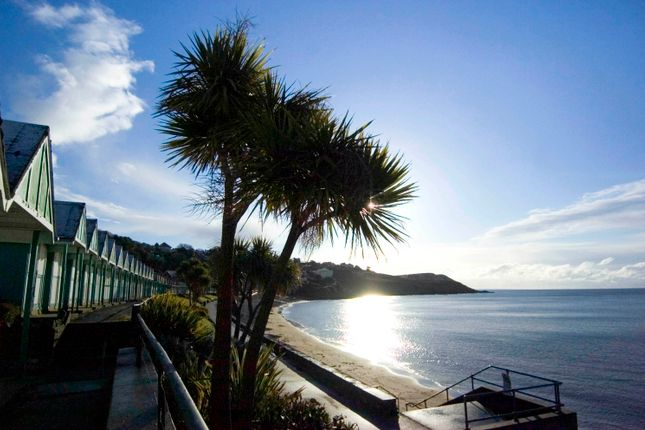Local Area of Penmaen, Gower, Swansea SA3