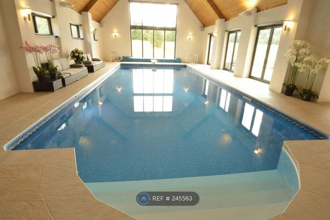 Thumbnail Detached house to rent in Pangbourne, Reading