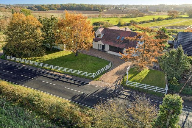 Thumbnail Detached house for sale in London Road, Stanford Rivers, Ongar, Essex