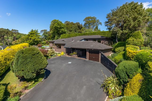 Thumbnail Detached bungalow for sale in Meadow Road, Torquay