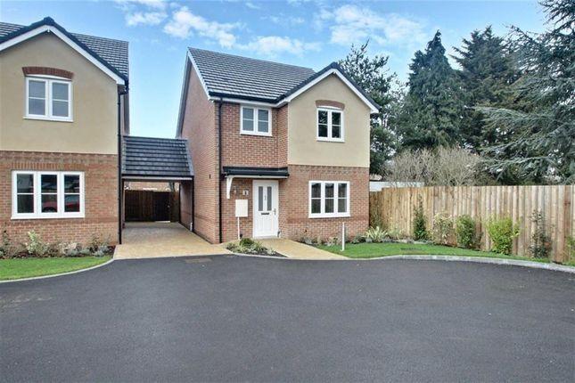 Thumbnail Detached house for sale in Jubilee Close, Adeyfield, Hemel Hempstead