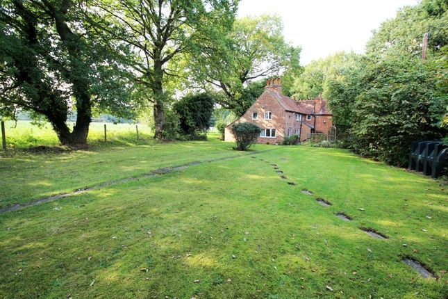 Thumbnail Cottage for sale in Beech Hill Road, Spencers Wood, Reading