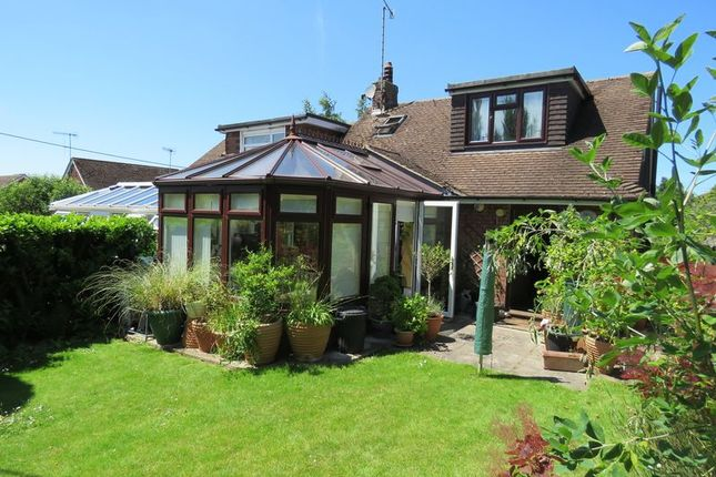 Thumbnail Semi-detached bungalow to rent in Chalklands, Bourne End