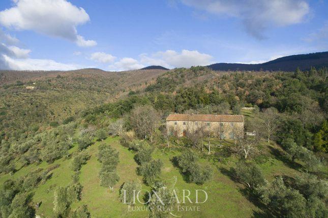 Ref. 3594 of Montale, Pistoia, Toscana
