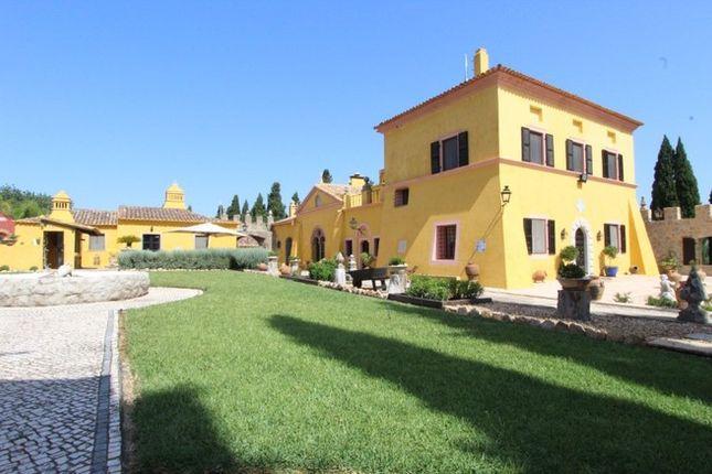 Thumbnail Villa for sale in Portugal, Algarve, São Brás De Alportel