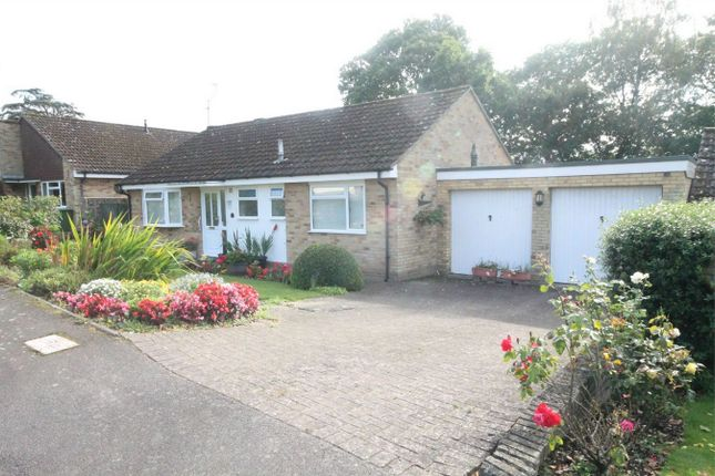 2 bedroom detached bungalow for sale in Holborne Close, Newbury