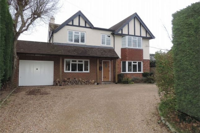Thumbnail Detached house for sale in Barnhorn Road, Bexhill On Sea, East Sussex
