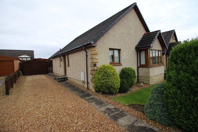 Thumbnail Detached bungalow for sale in Baillie Avenue, Greenrigg
