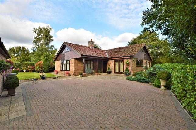 Thumbnail Detached bungalow for sale in Turnpike Road, Ryhall, Stamford