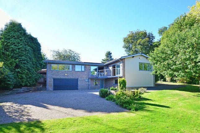Thumbnail Detached house for sale in Sweepers, Quarry Lane, Brincliffe, Sheffield