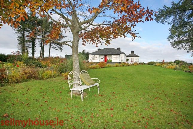 Properties For Sale In Clare County Munster Ireland