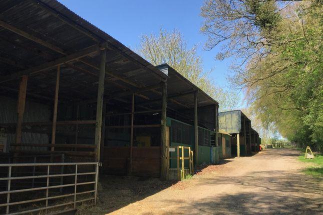 Thumbnail Land to let in Worting Road, Worting, Basingstoke