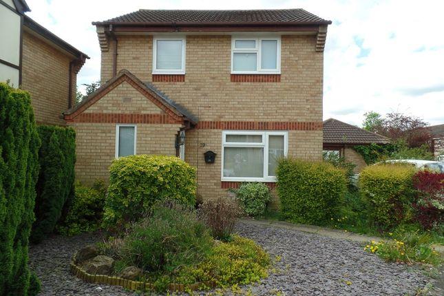 Thumbnail Property to rent in Caldbeck Close, Gunthorpe, Peterborough.