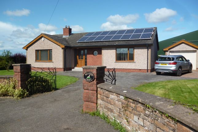 Thumbnail Detached bungalow to rent in Cumdivock, Dalston, Carlisle