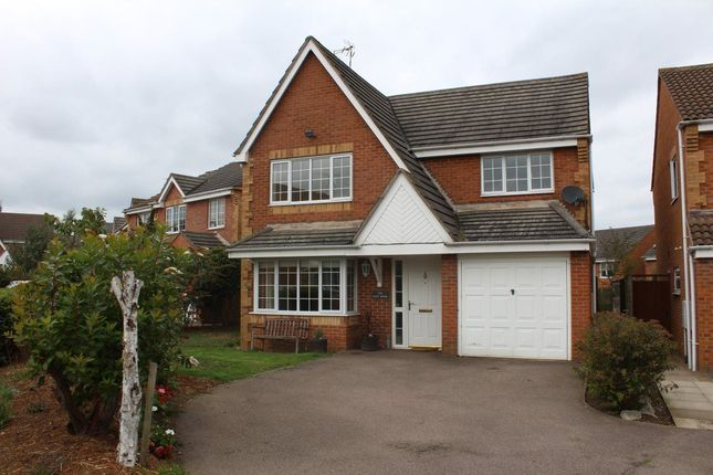 Thumbnail Property to rent in Polar Star Close, Daventry
