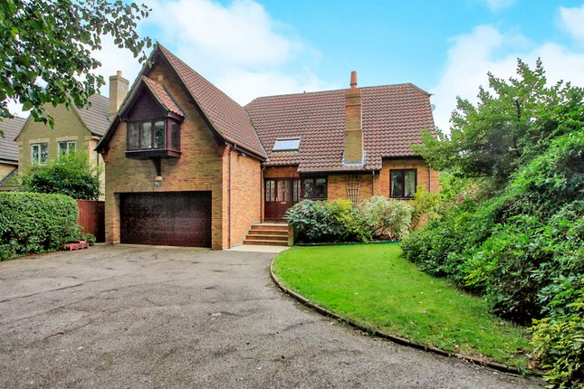 Thumbnail Detached house for sale in Mill Close, Peakirk, Peterborough