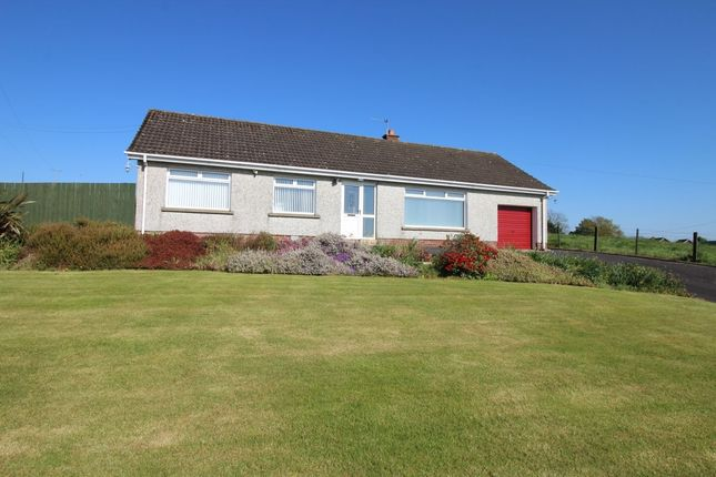 Thumbnail Bungalow to rent in Ballymullan Road, Lisburn