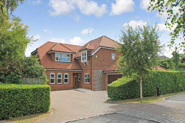 Thumbnail Detached house for sale in Damask Close, Tring