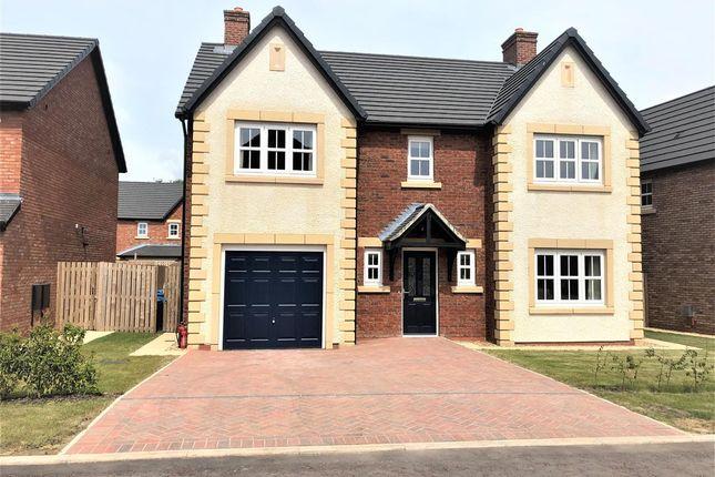 Thumbnail Detached house to rent in Townshill Drive, Kirkham, Preston
