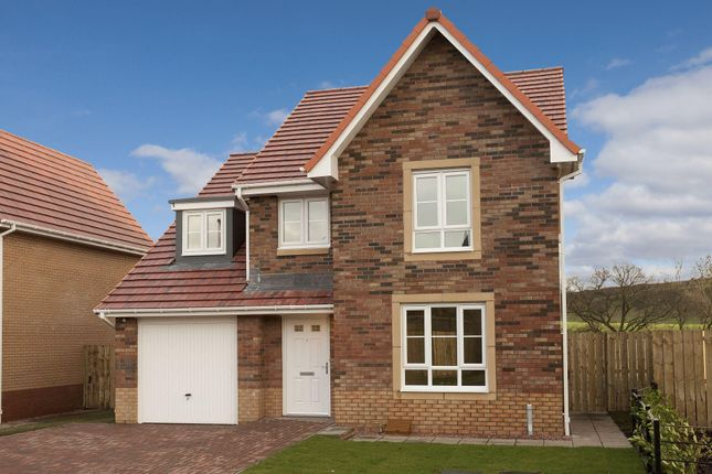 """Thumbnail Detached house for sale in """"Drummond"""" at Newton Farm Road, Cambuslang"""
