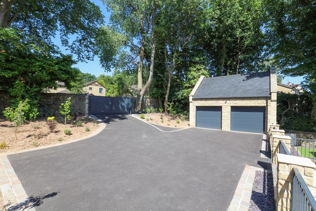 Garden of The Coach House, Belgrave Road, Ranmoor S10