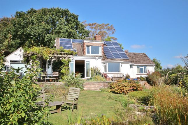 Thumbnail Bungalow for sale in Greenway, Somers Road, Lyme Regis