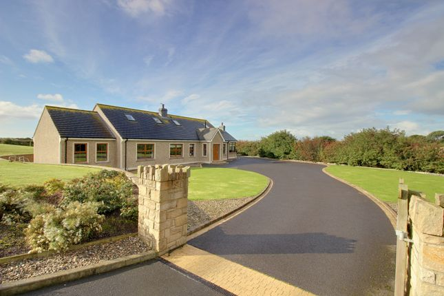 Thumbnail Detached house for sale in Horse Park Lane, Manse Road, Kircubbin
