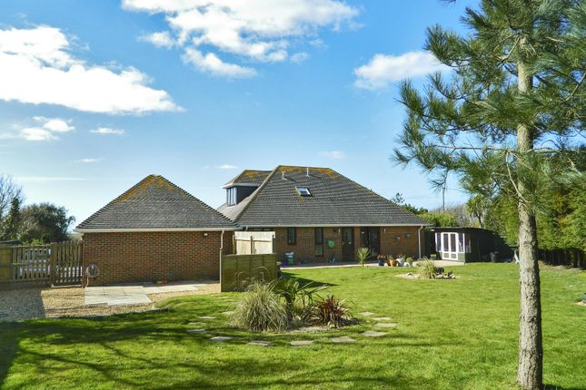 Thumbnail Detached house to rent in Milford On Sea, Lymington, Hampshire
